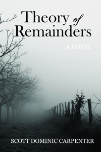 Theory of Remainders: A Novel